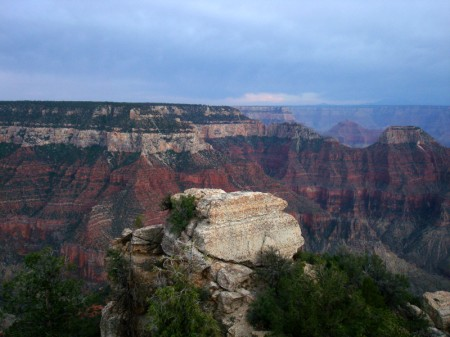 canyonviewnotusedyet