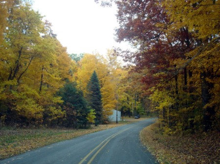 autumnroad