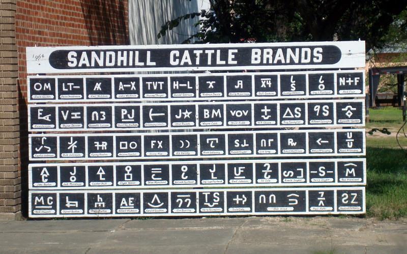 cattlebrandsplain.jpg